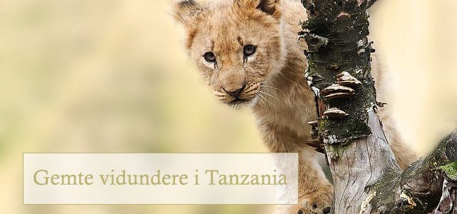 Gemte vidundere i Tanzania